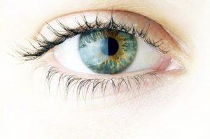 eye health ophthalmology and ayurveda